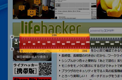 110306_ruler3.jpg