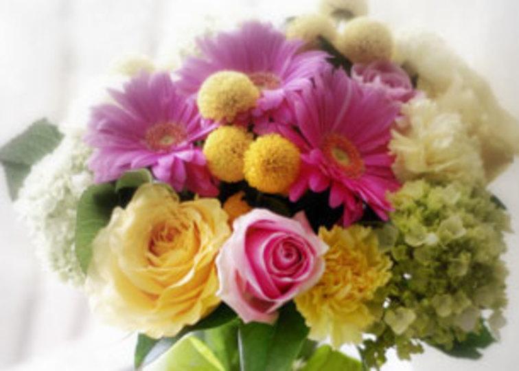 二酸化炭素の吸収率がもっとも高い花は、あの意外な品種!? エコな花を贈ろう #mylohas