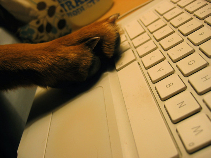 まとめ:Windows、Mac、Chrome、Firefox、Googleのショートカットキーを一挙公開!