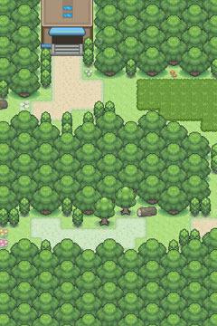 pixel-forest.jpg