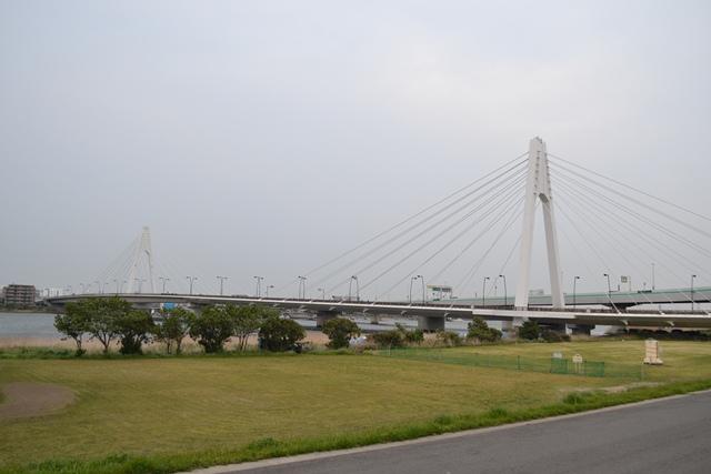 111103tamagawa.jpg