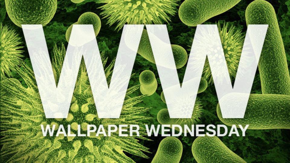 今週の壁紙堂vol.43 「科学実験系壁紙」