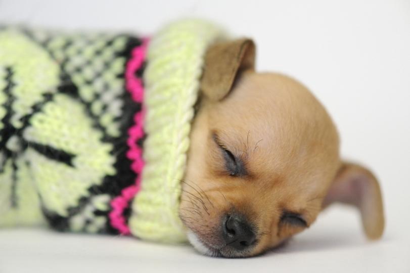 まとめ:安心して冬眠するためのライフハック記事10選