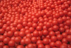 111201-tomato.jpg