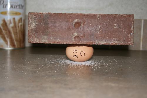 111215_eggshell.jpg