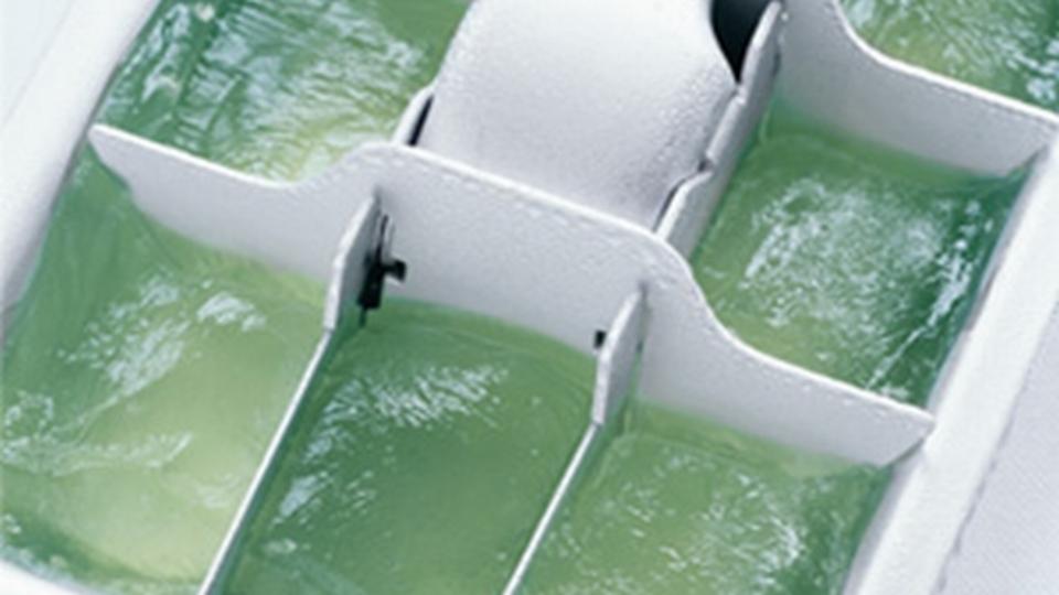 日焼け対策に! アロエベラを製氷皿で固めておこう