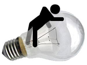 120210-bulb.jpg