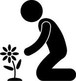 120305_plant-a-flower.jpg