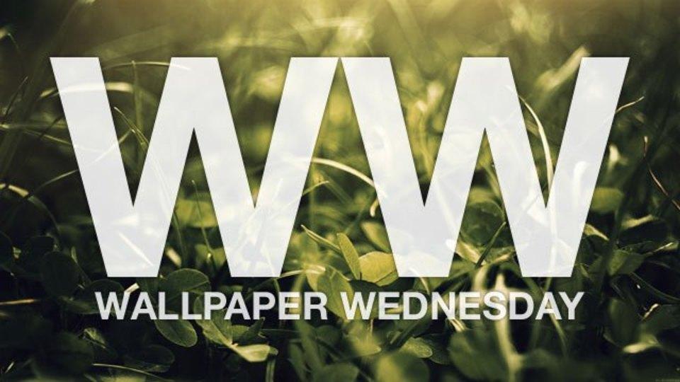 今週の壁紙堂vol.62「デスクトップを草原に」
