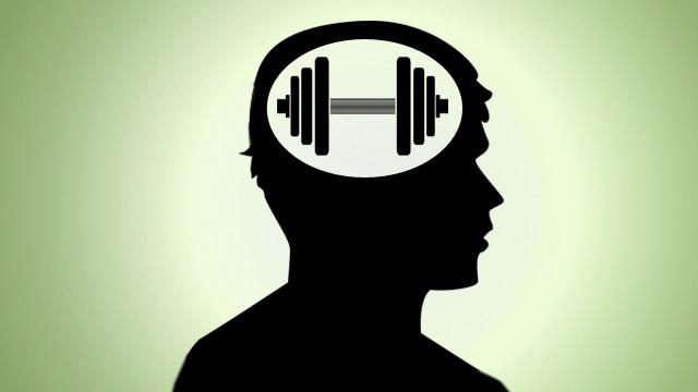 頭が良くなるには定期的な運動をするといい!? という実験結果