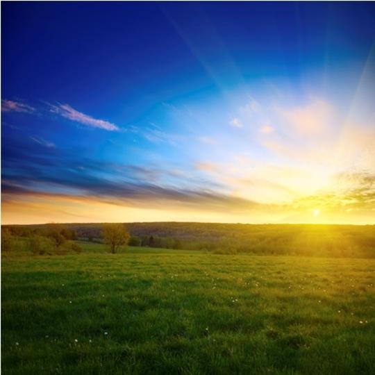 点灯・消灯を自動化して快適な目覚めを手に入れよう!