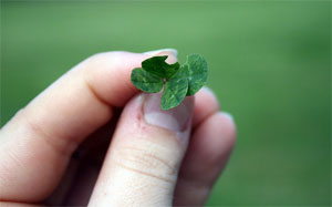 120604_four-leaf-clover.jpg