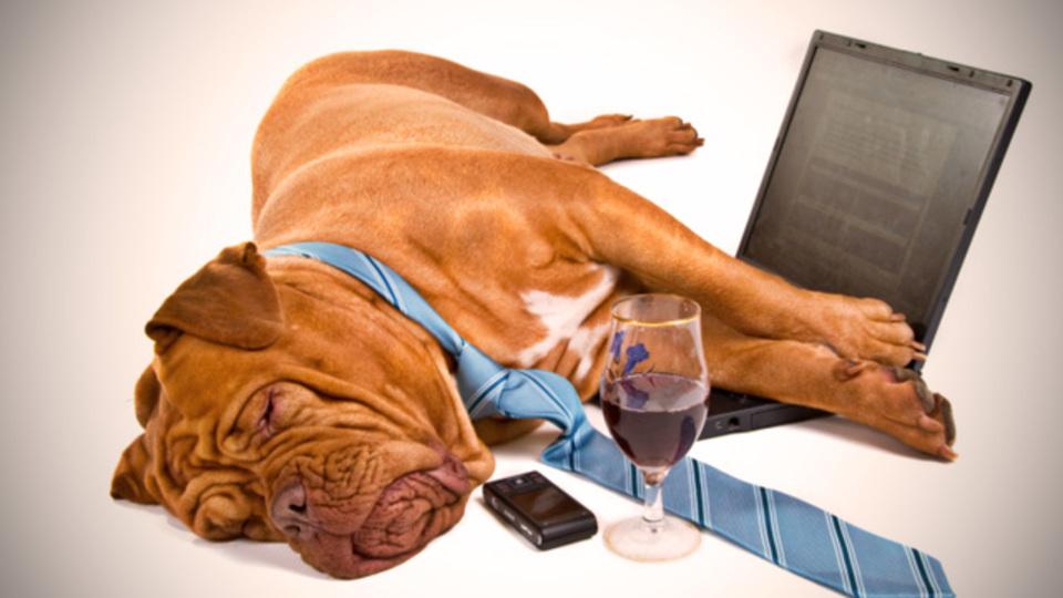 ワインのラベルを投稿して自分だけのワインノートを作れるサービス「WinePokke」