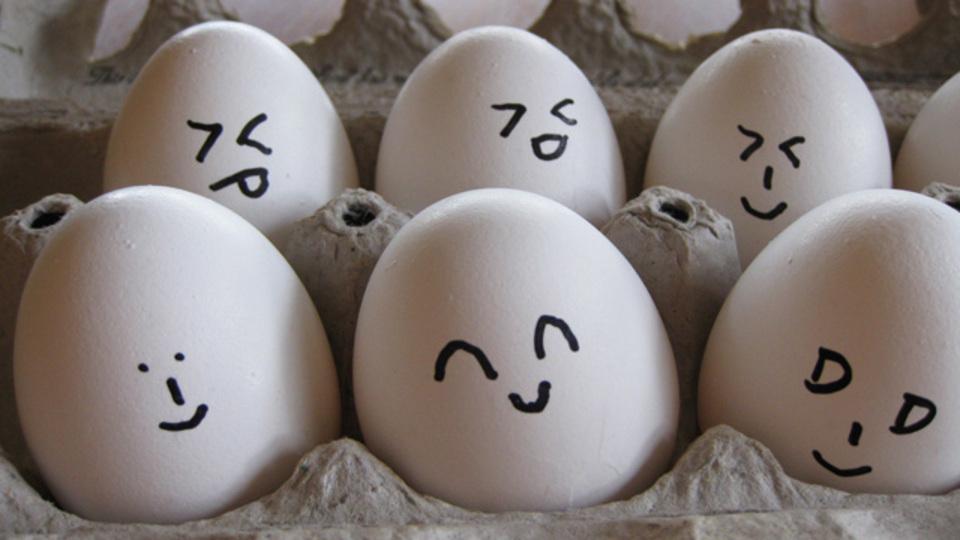 ペットボトルで卵の黄身と白身を一瞬で分けるワザ