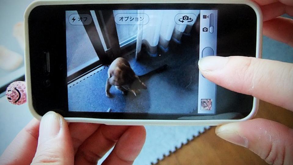 スマートフォンのカメラで手ブレせずに撮るコツ