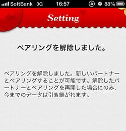 121201pairy_3.jpg