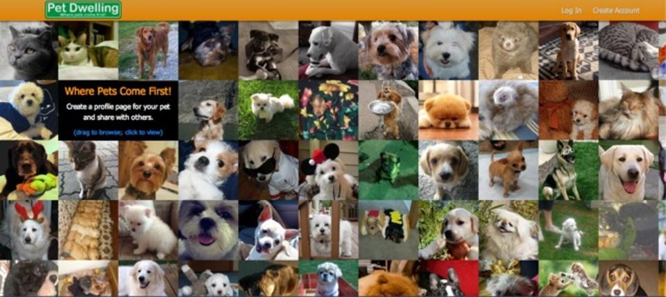 自分のペットのプロフィールをまとめられるサイト「Pet Dwelling」