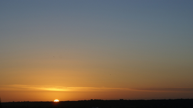 130104_Morning.jpg