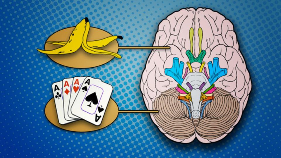 左脳がアナタに仕掛ける「5つの罠」
