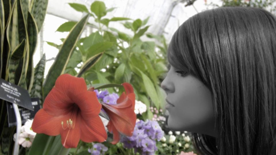 遺伝子が放つ「匂い」で、運命の人を嗅ぎ分ける