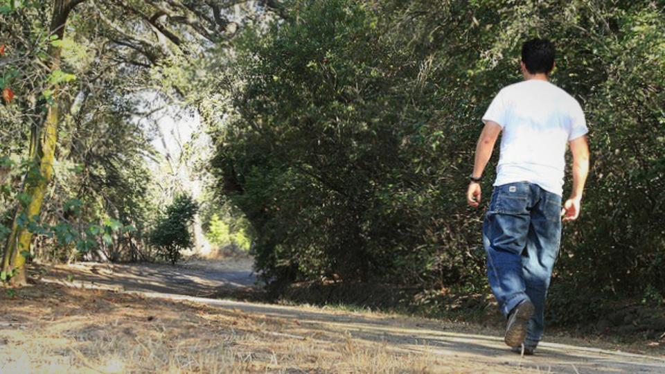 CM中に足踏みすれば約30分の散歩と同じ...座りっぱなし族に贈る「運動習慣のススメ」