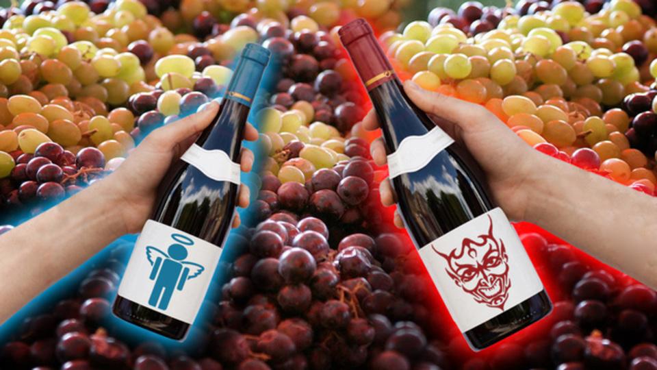 ワインの良し悪しが見分けられない本当の理由