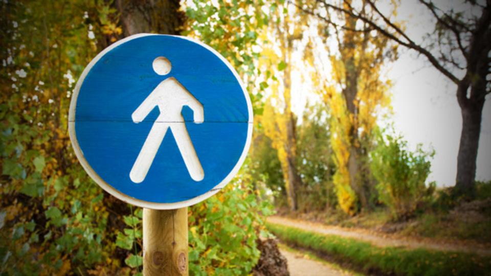 歩くのが速い人ほど長生きする:研究結果