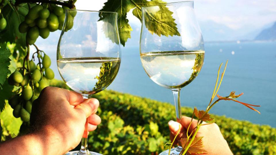 この夏はワイナリーで真昼間からワインをいっぱい飲もう! 温泉やディナーが楽しめるソムリエのおすすめ4選