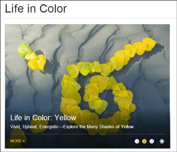 lifeincolor.jpg