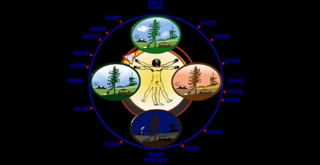 光が体内時計に与える影響