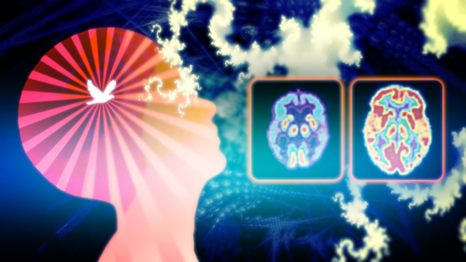 瞑想って本当にいいの? 脳の中で何がおきているのか究明してみた