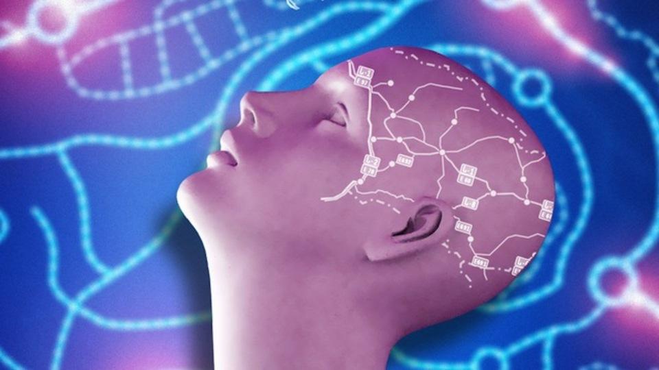 脳と想像力に刺激をくれる「マインドマップ」の基本をおさらい