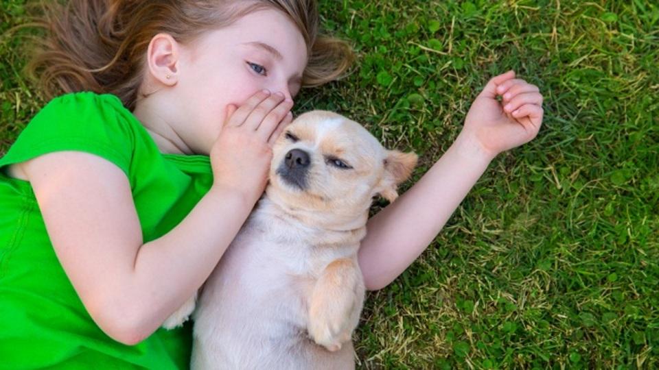 我が家に降りてきたフワフワの天使! ペットを飼うことで健康になれる9つの科学的理由