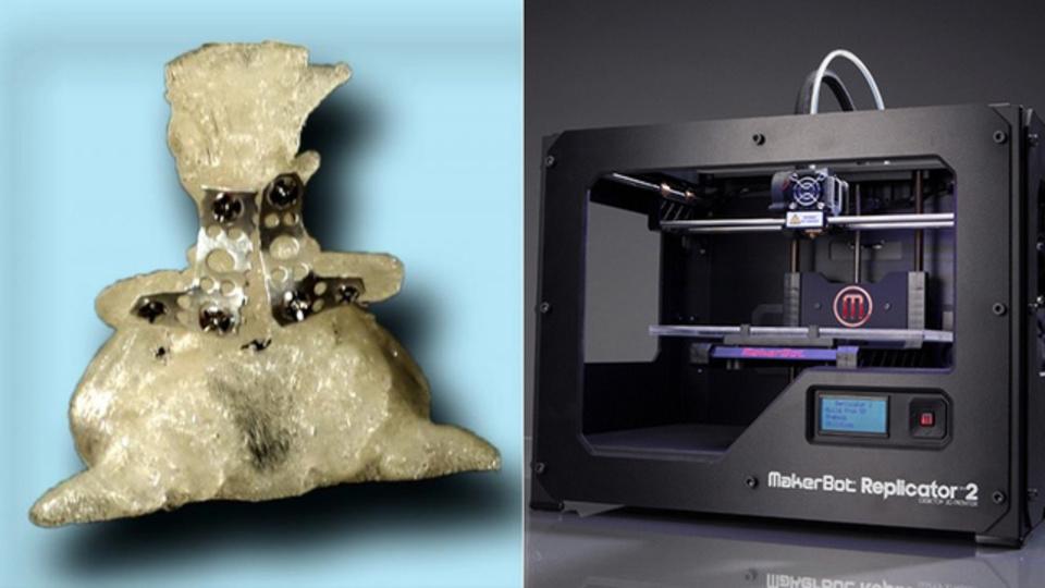 3Dプリンターが救うのは人間だけではない。ペット医療の現場でも大活躍