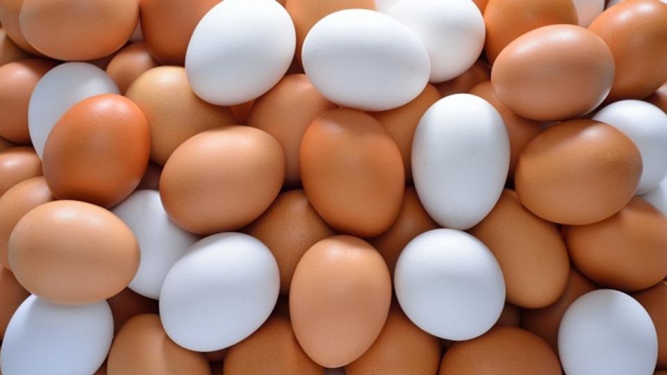 茶色い卵と白い卵は「味も栄養価も同じ」という事実