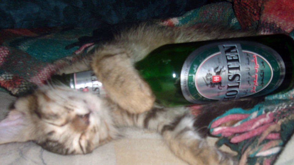 夜ぐっすり眠りたいなら、ビールではなく「ノンアルコールビール」