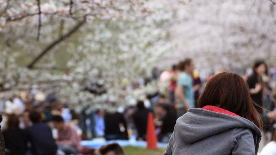 """桜を見ながら、桜を""""飲む""""。 ソムリエがオススメするお花見が盛り上がるドリンク"""