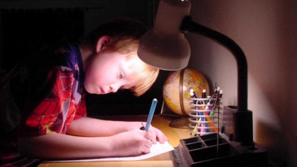 子どものやる気を引き出すご褒美はモノよりも「おもしろい情報」:研究結果