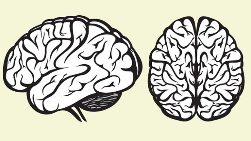 「脳」から起業を考える:スタートアップの成功を妨げる4つの潜在意識