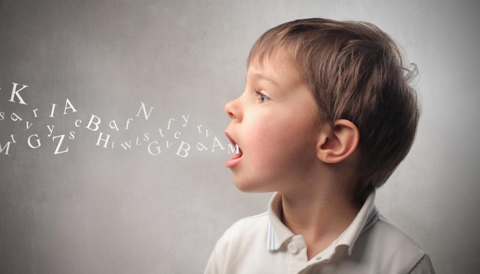 新しい言語を学ぶなら押さえておくべき科学的法則