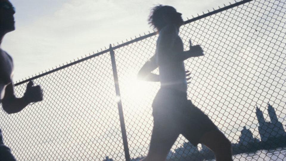 運動が好きだと仕事の成果も出やすいのか:池谷裕二に聞く「走ることは脳にいいの?」