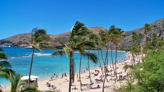 140715ana_hawaii.jpg