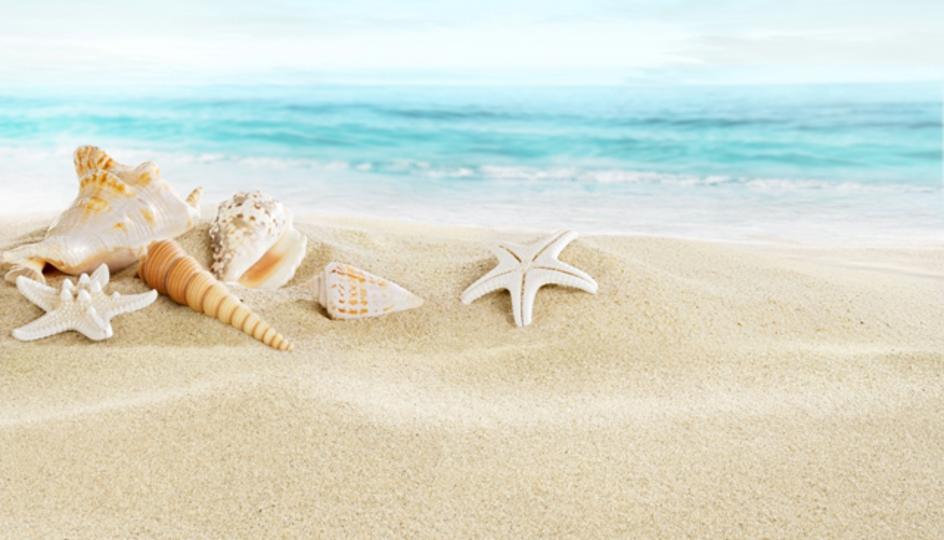 ビーチの砂から3倍長持ちするバッテリーができる:米国の大学院生が発見