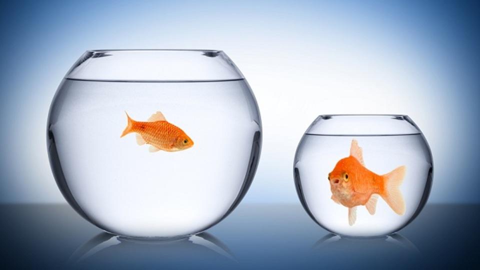 私たちはなぜ「妬み」の感情を抱くのか、そして「妬み」をポジティブに活かすにはどうすればいいのか