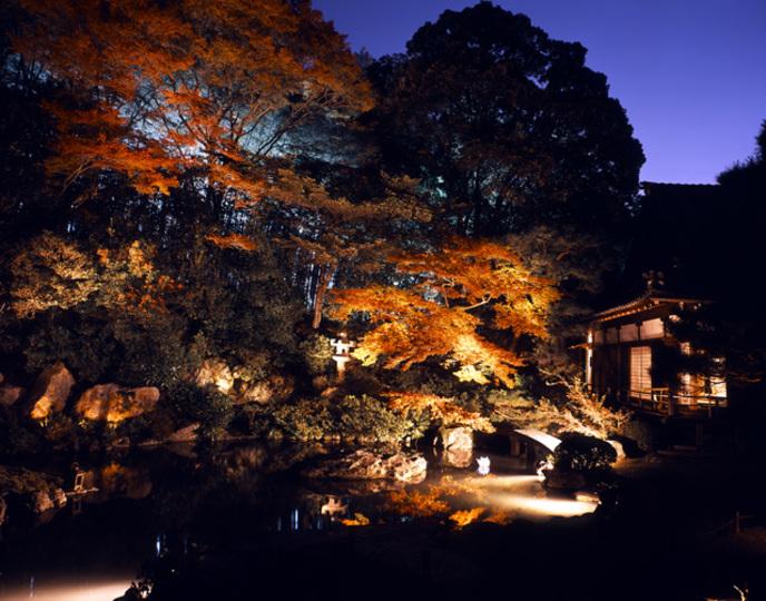 そうだ 京都のライトアップ(秋)、行こう。