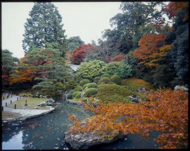 141018kyoto_autumn_4_3.jpg
