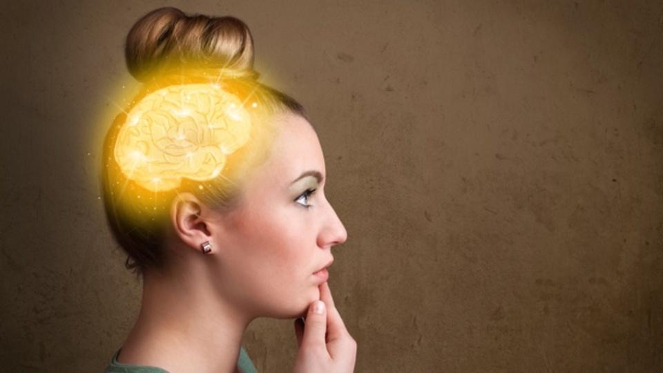 脳科学の知見をビジネスに活かす:相手の協調を促す「物語の力」