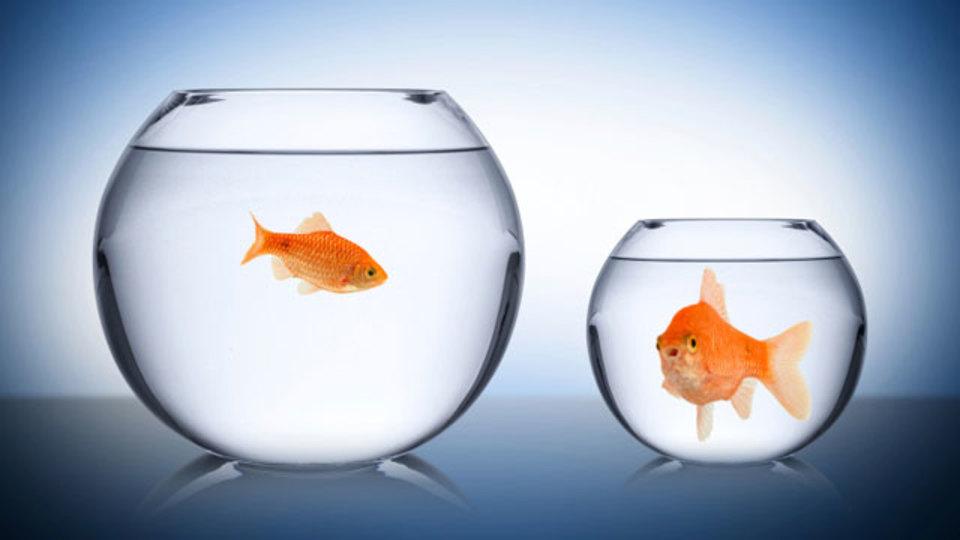 自分と他人を比べてしまうのはなぜか?(そして、比較をやめて生産性を上げる5つの方法)