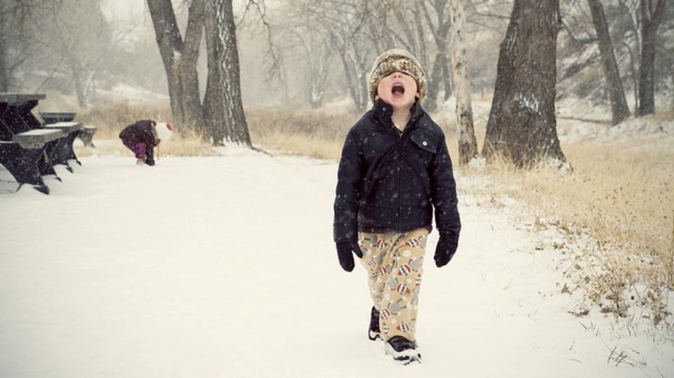 雪を食べても大丈夫?専門家の見解