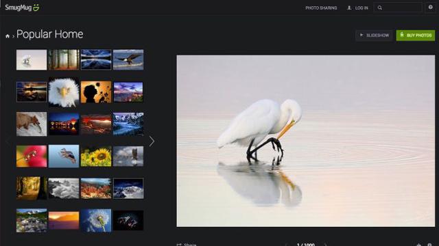 150216five_best_websites_for_imagehosting004.jpg